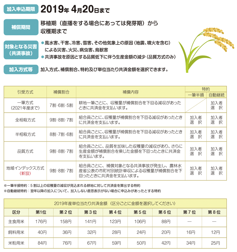 水稲共済の加入申し込み時期です